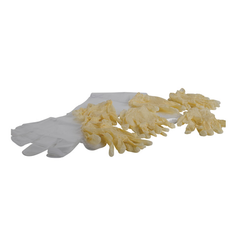 Six Pack of Latex Gloves